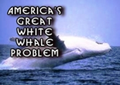 great-white-whale-problem-in-america-sm.jpg